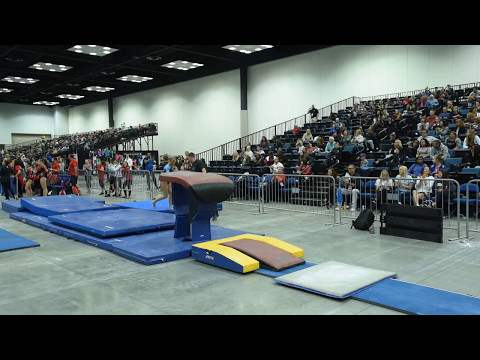 Lexi Graber - Vault 2 - 2017 Women's Junior Olympic Championships - Perfect 10!