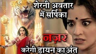 Nazar BIG TWIST : Tigress To Save Piya From Daayan And Dukaayan