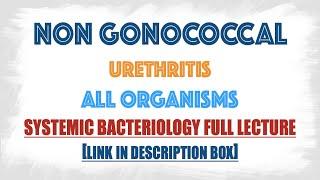 granulomatous prostatitis wiki Milyen italokat fogyaszt ha a prostatitis