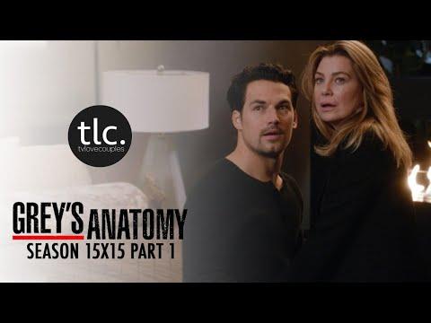 Greys Anatomy Meredith & Andrew DeLuca (MerLuca) Season 15-15 1/2