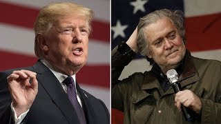 'Lost his mind': Trump lashes out at frmr adviser Bannon for comments in new book