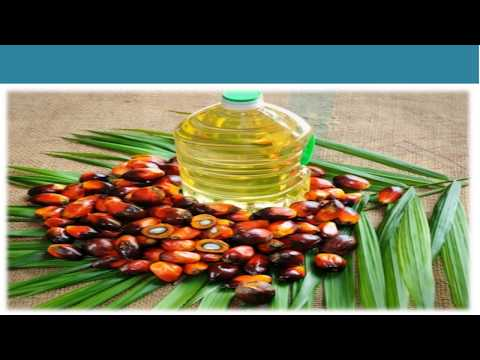 Global Palm Oil Market | Share, Size, Price Trends And Forecast 2018-2023