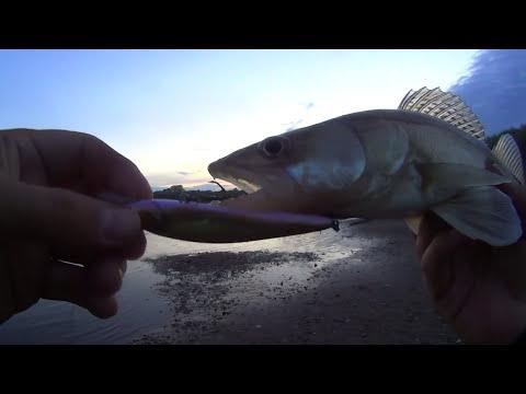Рыбалка с ночевкой - ночные судаки, НОРКА и мощные поклевки с утра!!!