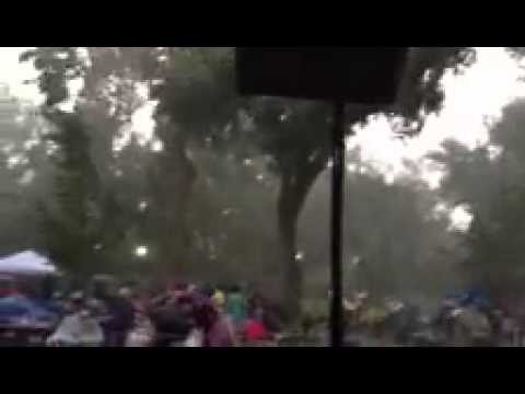 Thunderstorm hitting ABQ BioPark Zoo
