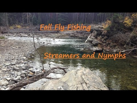 Fall Fly Fishing For Trout   Streamers Terrestrials And Nymphs   Cutthroat Trout