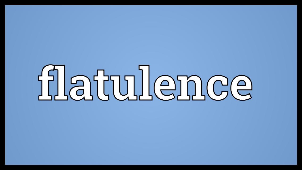 Flatulence Meaning   YouTube