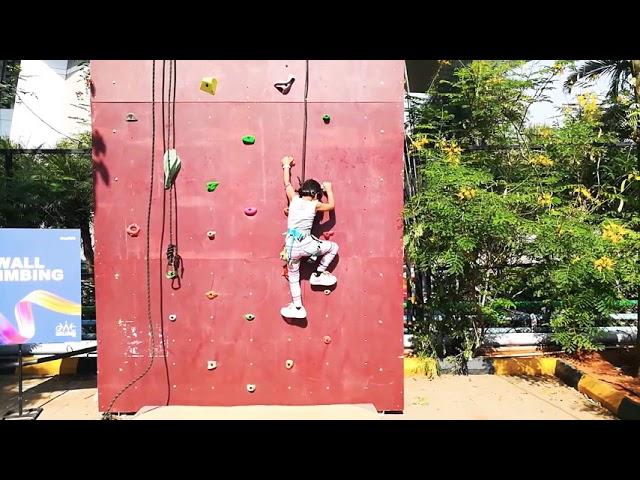 Wall climbing by pari