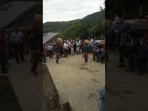 Sinop Ayancık köy düğünü