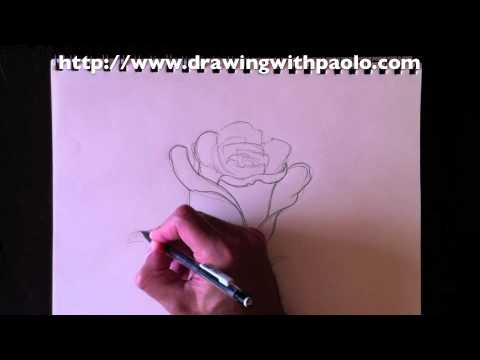 dessiner une rose avec paolo morrone youtube. Black Bedroom Furniture Sets. Home Design Ideas
