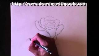 comment dessiner rose