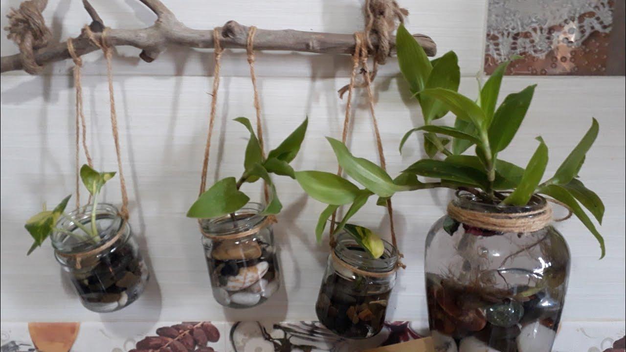 ديكور وإكثار نباتات الزينة المائية للمطبخ  البوتس  بخامات مسترجعة وطبيعية. Water garden déco ideas