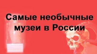 видео 10 лучших музеев России