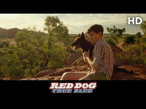 RED DOG: True Blue (2016) True Blue Clip [HD]