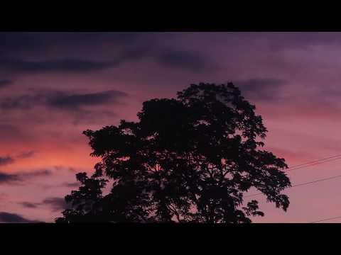 """Heart"" - Sleeping At Last (Micro Music Video)"