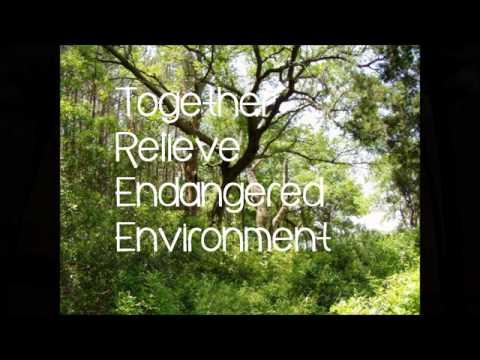 LET US T.R.E.E.!!! (Environmental Advocacy)