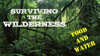 15th November  - Surviving the Wilderness: Food and water