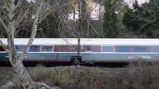 Amtrak Cascades 510 (アムトラック カスケーズ)
