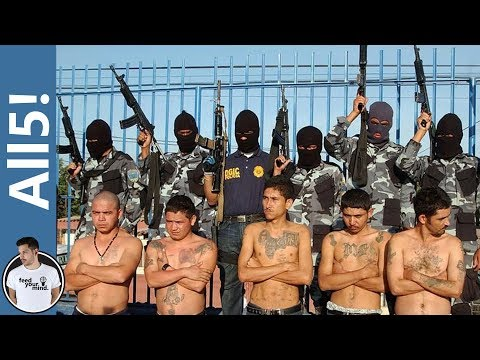 5 Most Dangerous Gangs In The World!