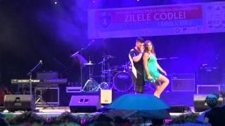 Alina Eremia ft DP   Zilele Codlei