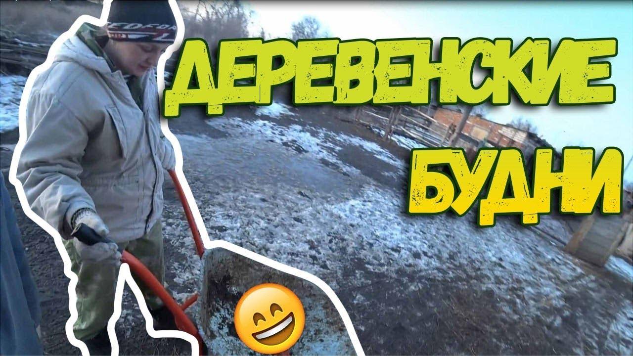 Разведение гусей Козловка - YouTube