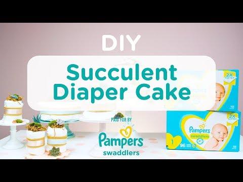 DIY Succulent Diaper Cake With Pampers 🌿 | Evite DIY