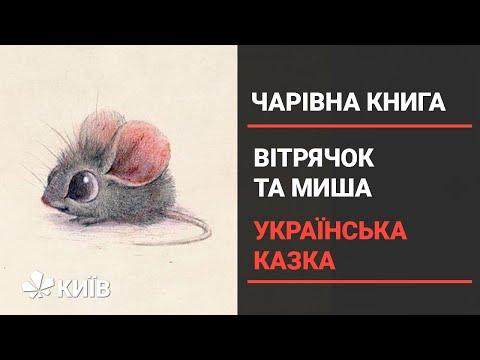 Телеканал Київ: Вітрячок та миша - українська народна казка (Чарівна книга 11.12.20)