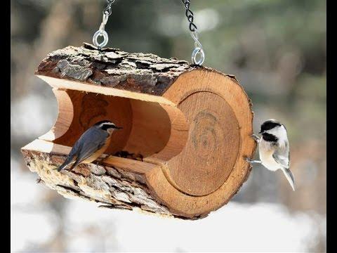 Симпатичные кормушки из дерева своими руками для птиц