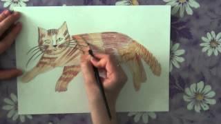 Как нарисовать карандашом кота.
