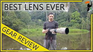 Photography Equipment - The Best Wildlife Lens Ever - Canon 600mm f/4 L IS II