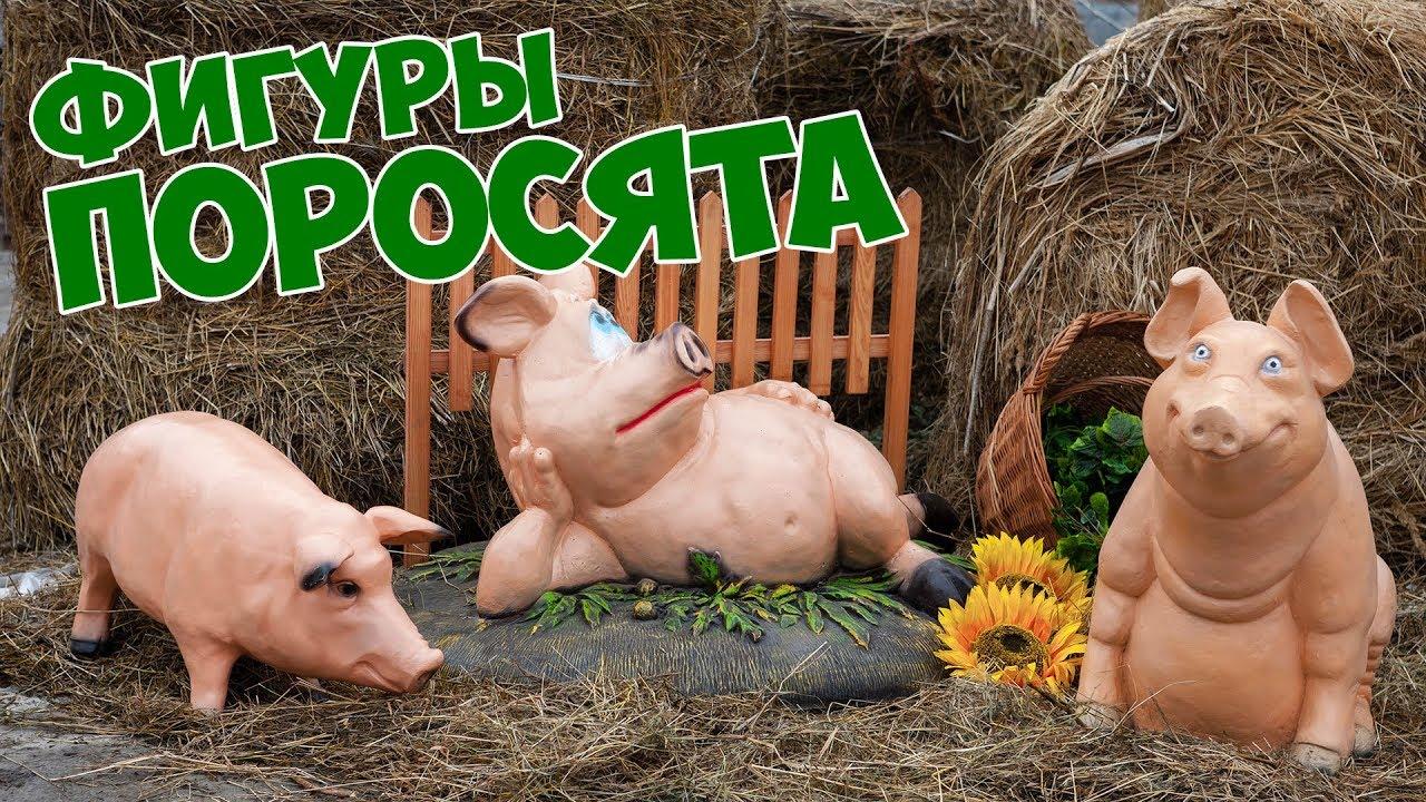 Экзотическая и уникальная порода декоративных свиней мини-пиги. Особенности и преимущества; породы; где купить поросят; чем кормить.