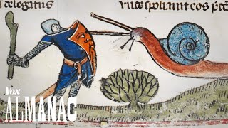 Look in the margins of medieval books and you'll find an unusual theme: knights vs. snails. Follow Phil Edwards and Vox Almanac on Facebook for more: ...