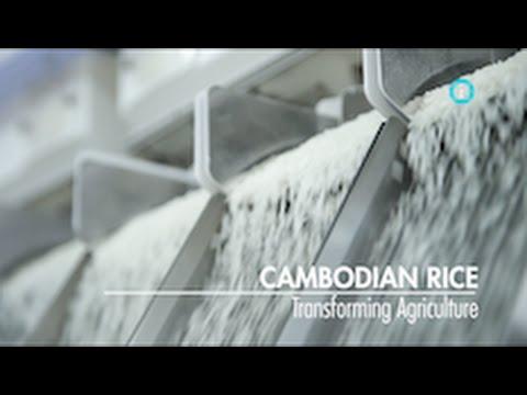 Cambodian Rice: Transforming Agriculture / i-Profile: CAMBODIA - A New Economic Frontier