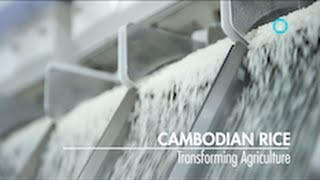 Cambodian Rice: Transforming Agriculture / i-Profile: CAMBODIA - A New Economic Frontier