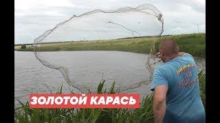Ловим ЗОЛОТОГО карася Рыбалка Кастинговой сетью с лодки