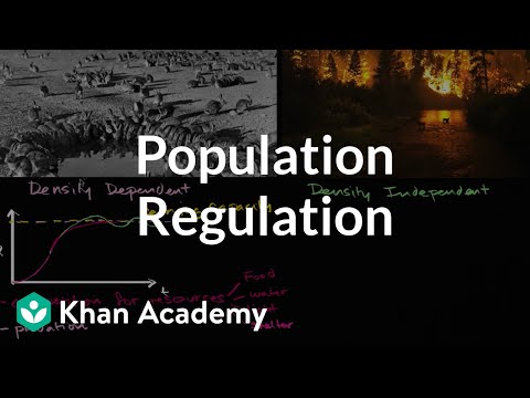 Population regulation | Ecology | Khan Academy