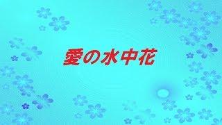【裏声シリーズ】 松坂慶子さんの「愛の水中花」を歌ってみました。 <...