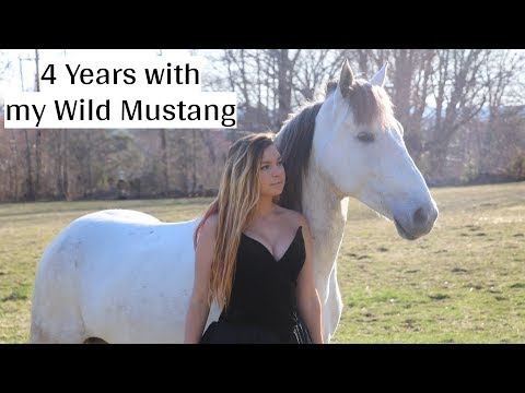 Horse Of A Lifetime | 4 Years W/my Wild Mustang