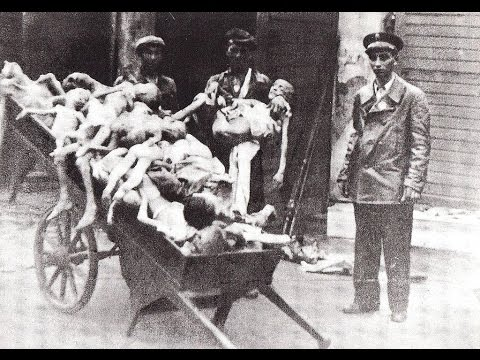 Why Is the Holocaust the Most Well-Known and Only Genocide We Learn About? (1999)