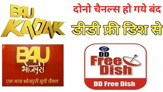 DD Free Dish  Removed 2 Channels From 8 July 2020 | DD Free Dish