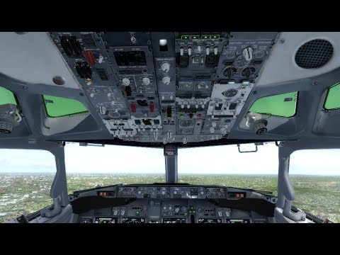 Rookie Pilot flying Boeing 737-800 | Gdansk - Dublin