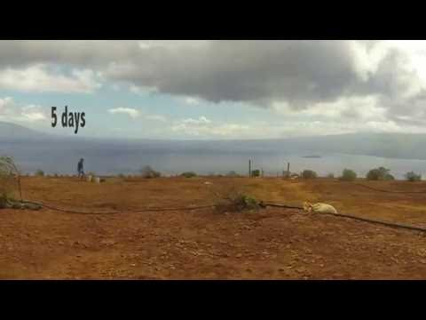 GoPro A Week in Kaho