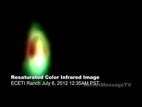 Dog barks at UFO captured on ECETI video