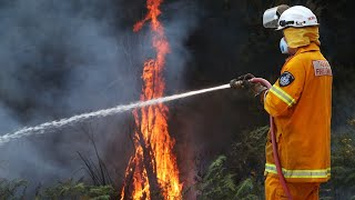 Lack of fire reduction burn offs 'clearly an issue in NSW'