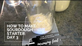 How to Make Sourdough Day 3 ~ Increasing Our Feed