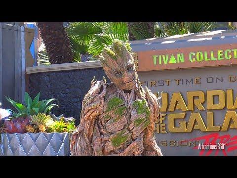 [HD] Groot Character Meet and Greet at Disneyland Resort