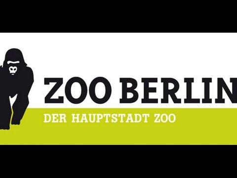 Besuch im Zoo Berlin