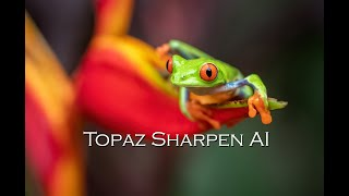 Topaz Sharpen AI Demo: Before & After Examples from Costa Rica