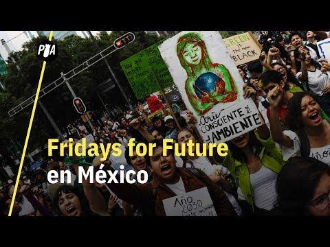 Fridays for Future llegó a México