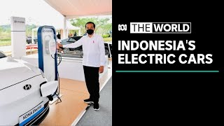 Indonesia confident it will produce electric vehicles within three years | The World