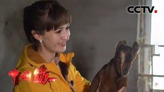《中国缘》 20210110 乌克兰少女下乡记| CCTV中文国际 - YouTube